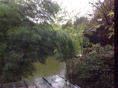 箱根酒店窗外風景1