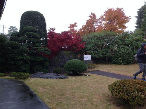 紅葉風景照 6