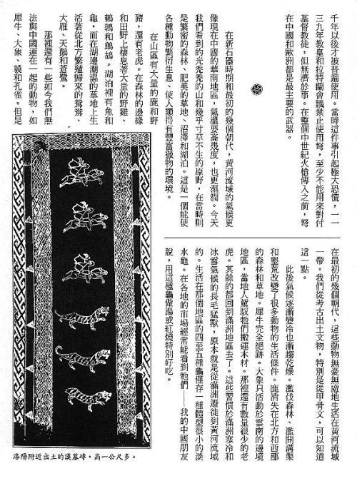 漢字的故事:<野生動物 ( 3-10 )>