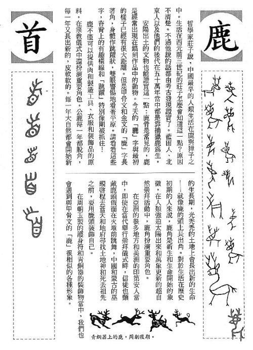 漢字的故事:<野生動物 ( 3-11 )>