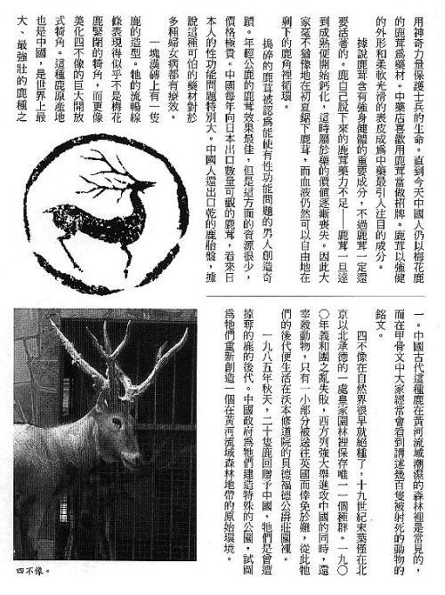 漢字的故事:<野生動物 ( 3-13 )>