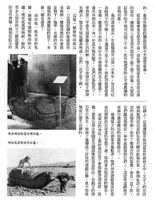 漢字的故事:<野生動物 ( 3-15 )>