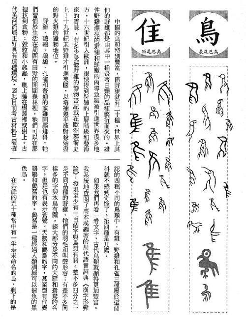 漢字的故事:<野生動物 ( 3-17 )>