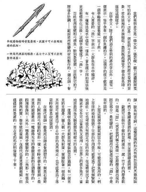 漢字的故事:<野生動物 ( 3-6 )>