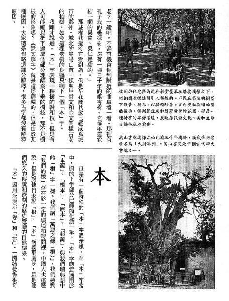 漢字的故事:<竹與樹 ( 9-6 )>