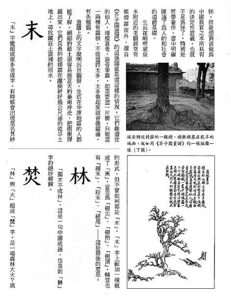 漢字的故事:<竹與樹 ( 9-7 )>
