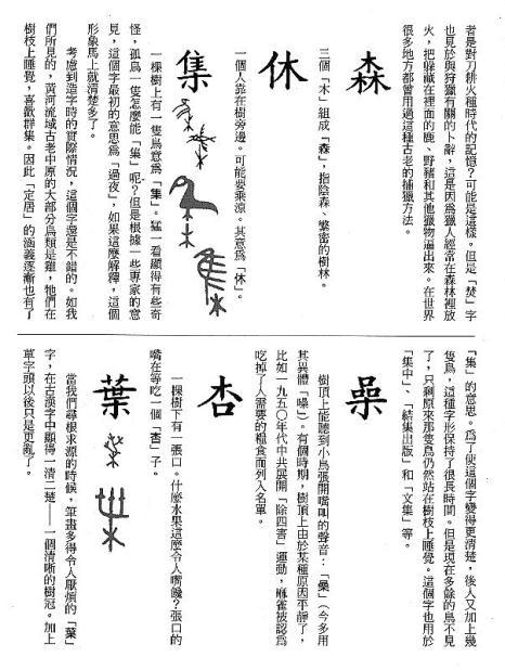 漢字的故事:<竹與樹 ( 9-8 )>