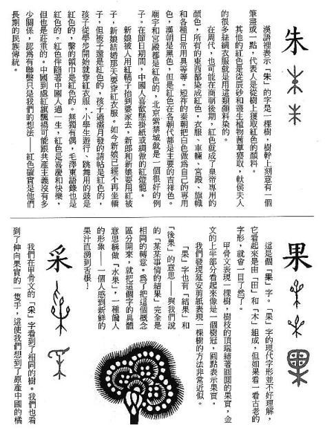 漢字的故事:<竹與樹 ( 9-9 )>