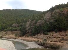 有溫泉的河流